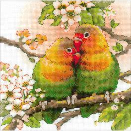 Sad s akrylovou příze - Papoušíci