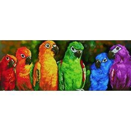 Diamond painting sada - Duhoví papoušci