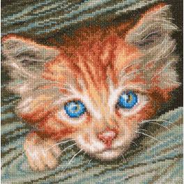Vyšívací sada - Kočičí pozorovatel
