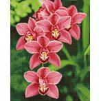 WD033 Diamond painting sada - Orchidea