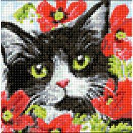 Diamond painting sada - Kočka v květinách