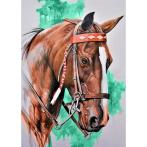 Diamond painting sada - Hlava koně