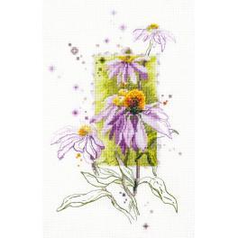 Vyšívací sada - Echinacea