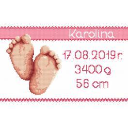 Předloha ONLINE - Výšivka k narození - děvčátko