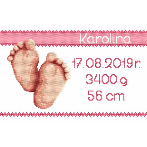 W 8971-01 Předloha ONLINE pdf - Výšivka k narození - děvčátko
