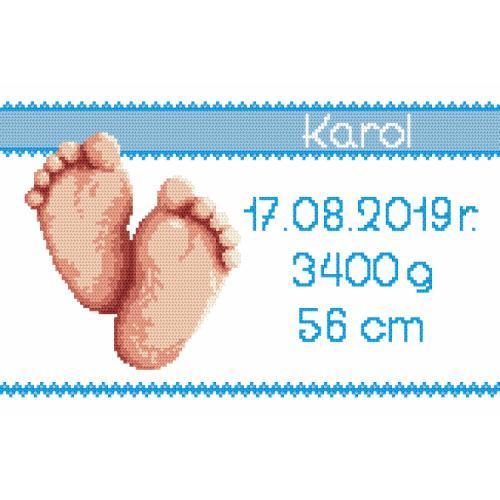 W 8971-02 Předloha ONLINE - Výšivka k narození - děvčátko