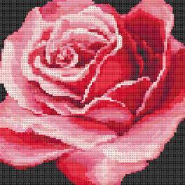 Diamond painting sada - Červená růže