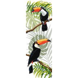 Předloha - Tukani