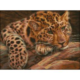 Diamond painting sada - Leopard