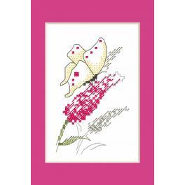 Předloha ONLINE - Karta na přání - Motýl