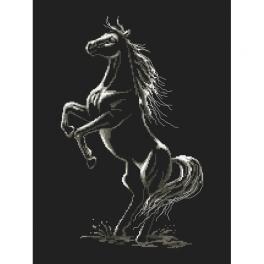 GC 10243 Předloha - Začarovaný kůň