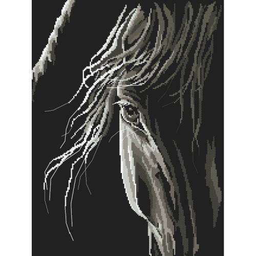 GC 10246 Předloha - Pohled koně