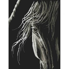Vyšívací sada - Pohled koně