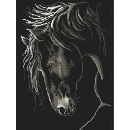 Předloha - Důstojný kůň