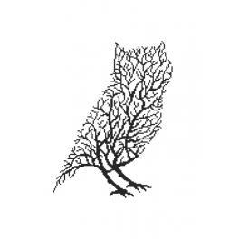 Vyšívací sada - Černá sova