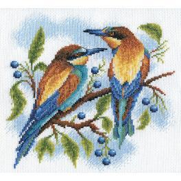 PAPS 0429 Vyšívací sada - Barevní ptáci