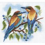 Vyšívací sada - Barevní ptáci
