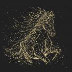 Vyšívací sada - Hvězdný kůň