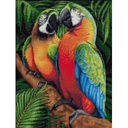 M AZ-1791 Diamond painting sada - Papoušci v džungli