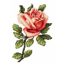 Předloha online - Růže - B. Sikora-Malyjurek