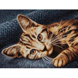 Diamond painting sada - Hnědá kočka
