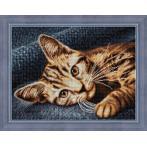 M AZ-1700 Diamond painting sada - Hnědá kočka