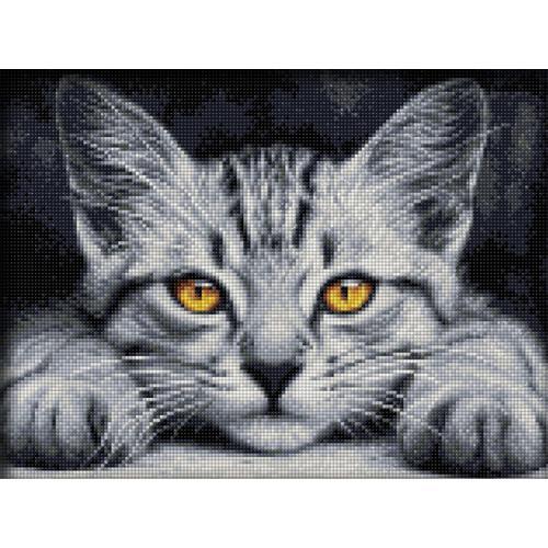 M AZ-1807 Diamond painting sada - Žlutooké kotě