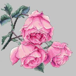 Vyšívací sada s mulinkou a potiskem - Větvička s růžemi