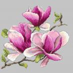 GC 10271 Předloha - Vonící magnolie