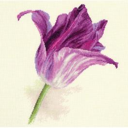 Vyšívací sada - Tulipán – fialový aksamit