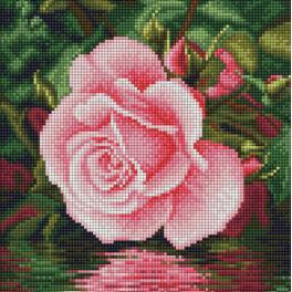 Diamond painting sada - Růže nad vodou