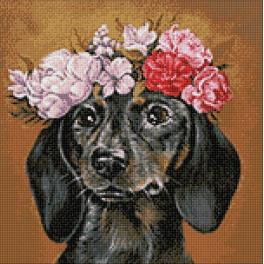 WD2465 Diamond painting sada - Jezevčík v květinách