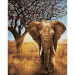 Diamond painting sada - Africký slon