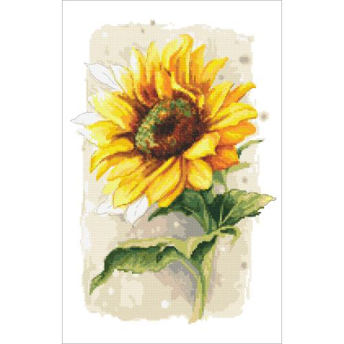 AN 10436 Předtištěná aida - Hrdá slunečnice