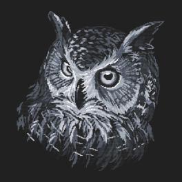 Předloha - Šedá sova