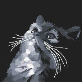Vyšívací sada s mulinkou a podiskem - Šedá kočka