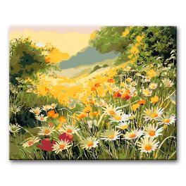 CZ 06285 Sada pro malování podle čísel - Letní louka