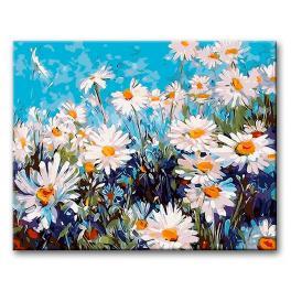 CZ 29754 Sada pro malování podle čísel - Sedmikrásky