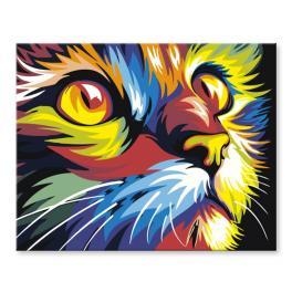 Sada pro malování podle čísel - Barevná kočka