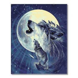 WD T127 Sada pro malování podle čísel - Vlk v září měsíce