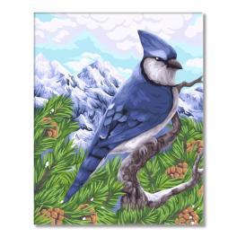 WD H106 Sada pro malování podle čísel - Modrá sojka