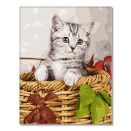 GX26366 Malování podle čísel - Koťe v košíku