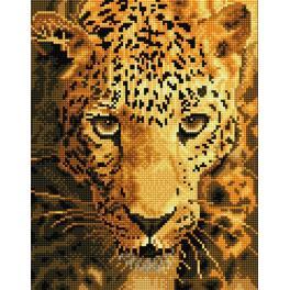 DD6.005 Diamond painting sada - Jaguár na lovu