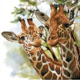 DD8.017 Diamond painting sada - Vznešené žirafy