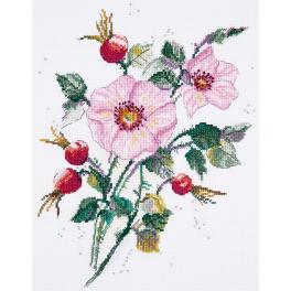 PAC 1888 Vyšívací sada - Divoká růže