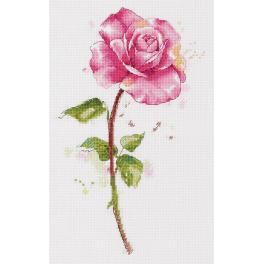 PAC 7190 Vyšívací sada - Akvarelová růže