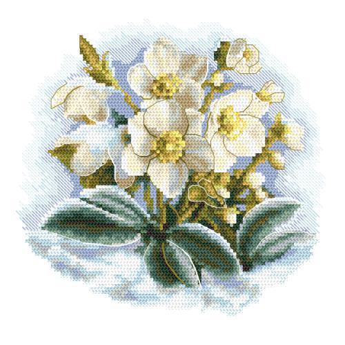 GC 10306 Předloha - Zimní květina