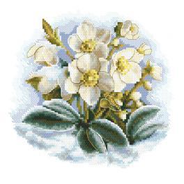 ZI 10306 Vyšívací sada s mulinky a korálky - Zimní květina