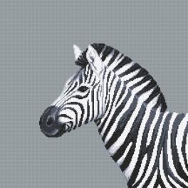 Z 10656 Vyšívací sada - Černo-bílá zebra