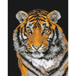 K 444 Předtištěná kanava - Tygr